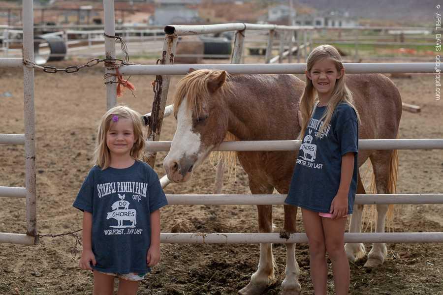 STAEHELI FAMILY FARM CAMP-2