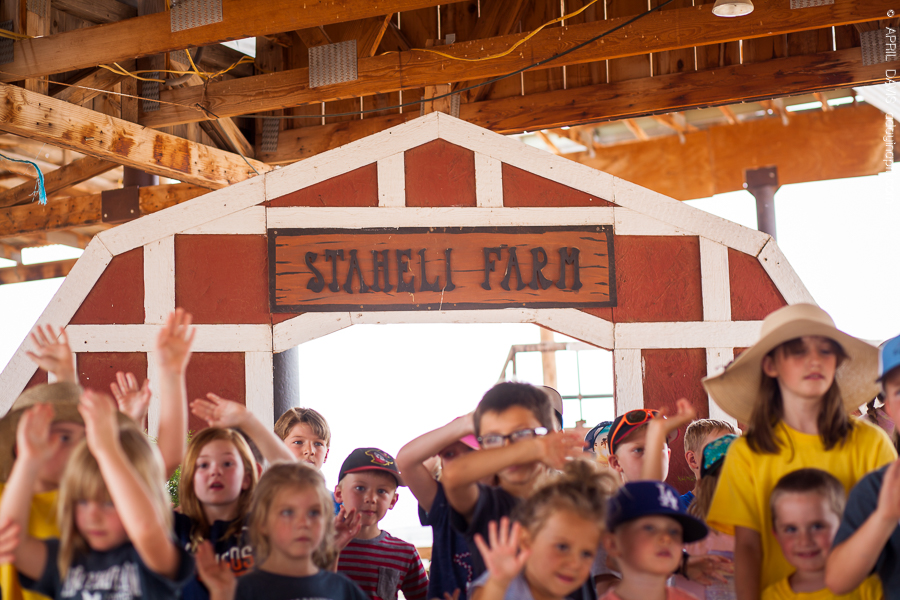 STAEHELI FAMILY FARM CAMP-4