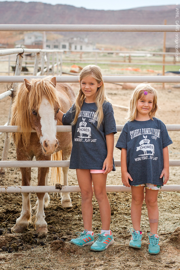 Children participating at Staheli Family Farm in St George UT for summer farm camp.