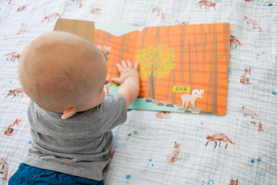 Cute books for babies
