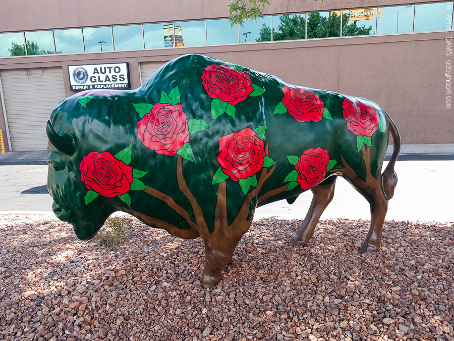 Dixie Trailblazers Bison Buffalo St George UT Art Walk-14