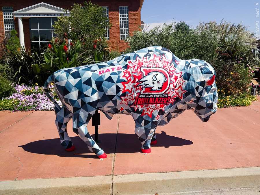 Dixie Trailblazers Bison Buffalo St George UT Art Walk-9